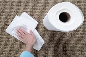 blotting a stain, removing a red wine stain with a paper towel