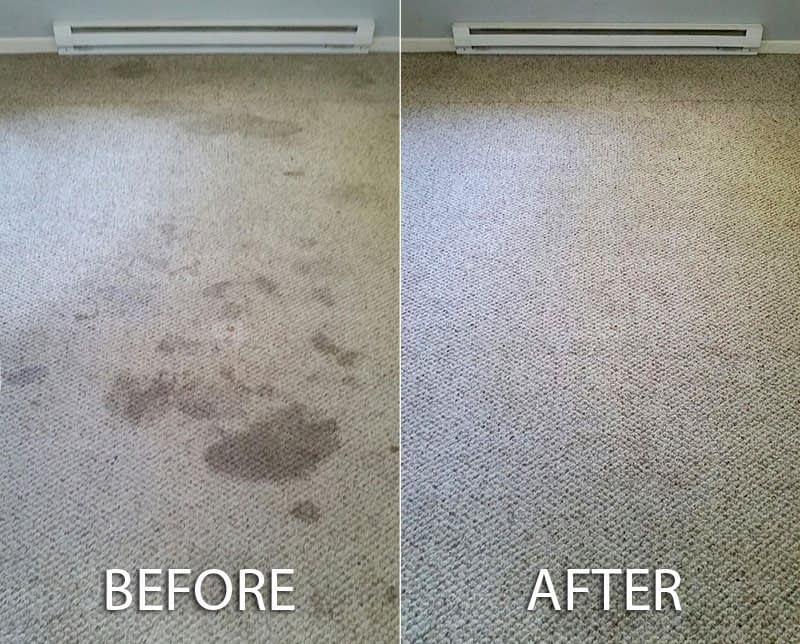 Image result for before and after of wet carpet cleaning